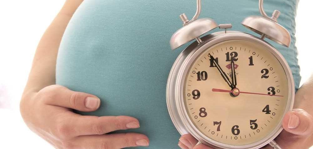Přenášení plodu