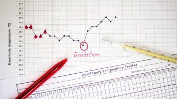 Vyšetření ovulace