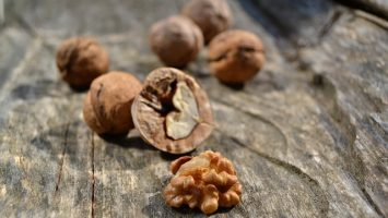 Ořechy v těhotenství