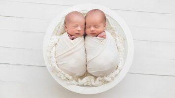 Jednovaječná dvojčata